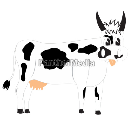 drawing of the cow on white