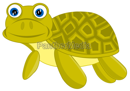 cartoon of the terrapin on white