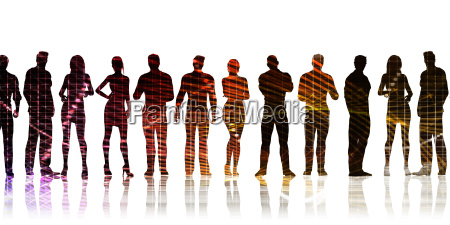 business team profis