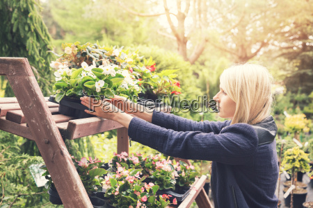 woman pick flower pot from shelf