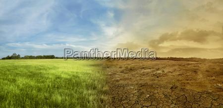 landschaft des wiesenfeldes mit der wechselnden
