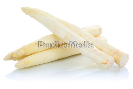 white asparagus isolated white isolated
