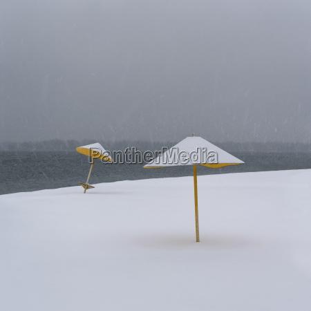 ukraine dnepropetrovsk region dnepropetrovsk city snowy