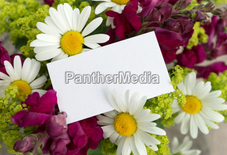 bouquet of flowers with lily leaves