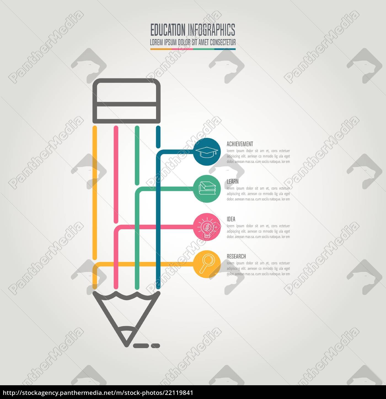bildung, infografik, vorlage, 4, schritt, option. - 22119841