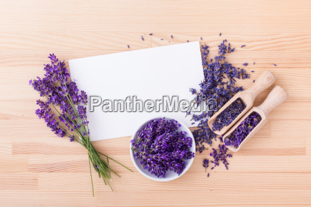 lavender flowers with copy space