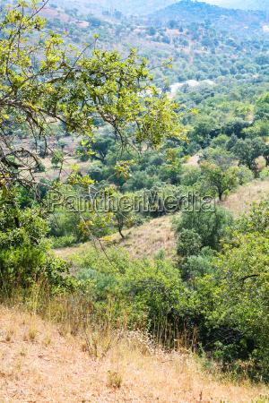 slopes of serra do caldeirao mountains