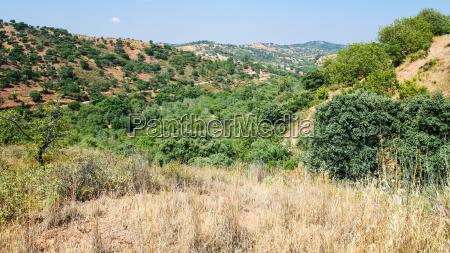 view of serra do caldeirao mountains