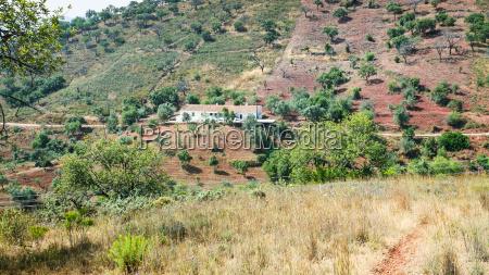 farm in serra do caldeirao mountains