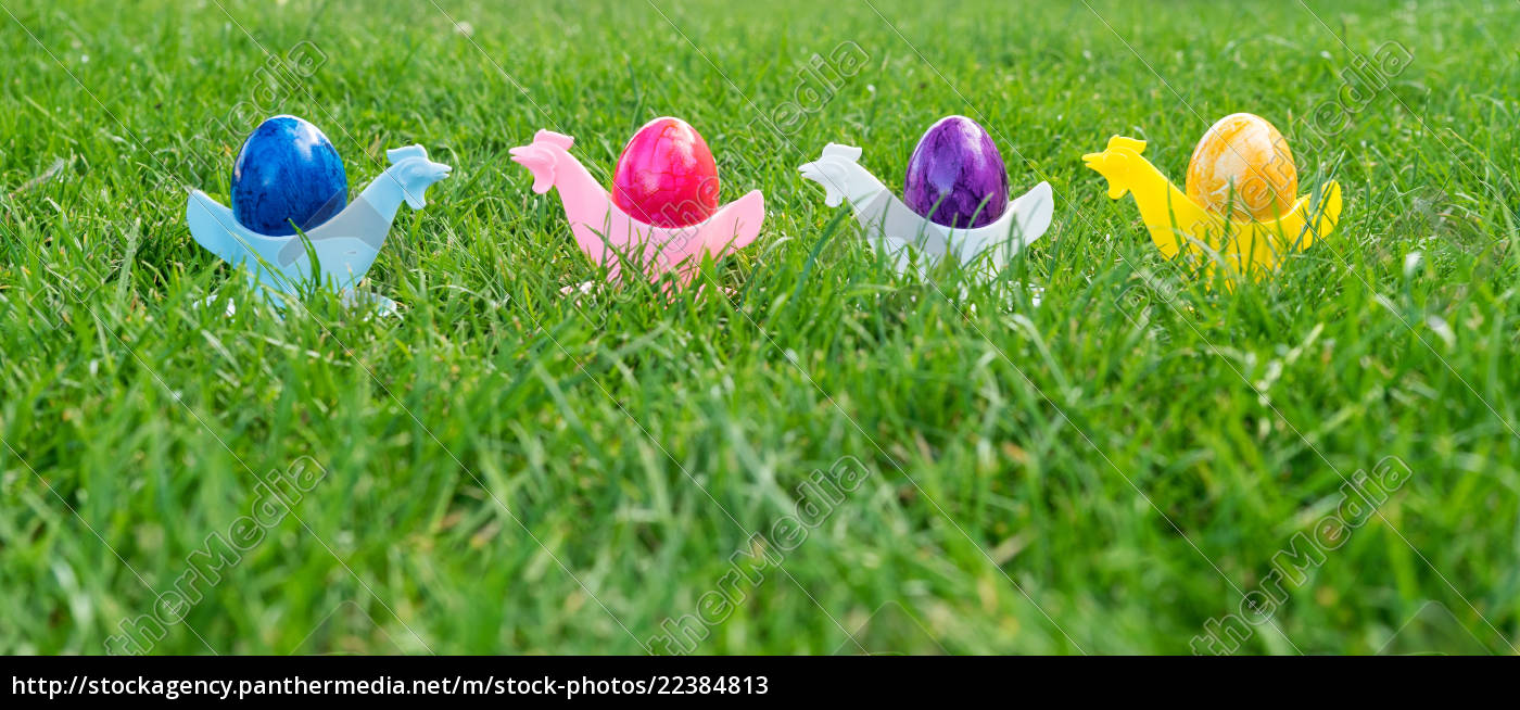 colorful, easter, eggs, in, the, egg - 22384813