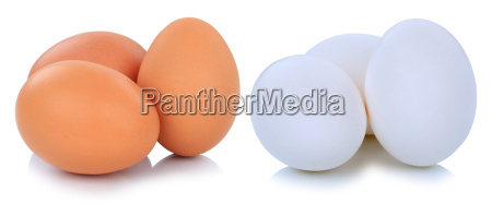 brown and white white eggs cut