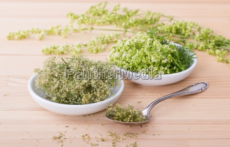 fresh and dried hedge bedstraw