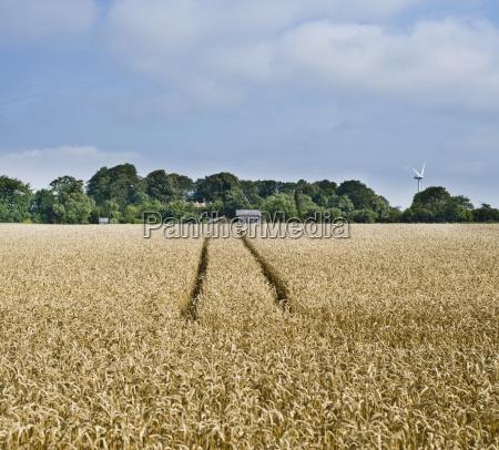 industrie industriell landwirtschaft ackerbau feld europa