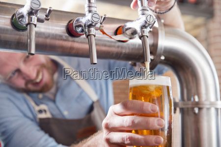 close up of bartender pouring pint