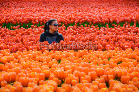 young woman in tulip fields in
