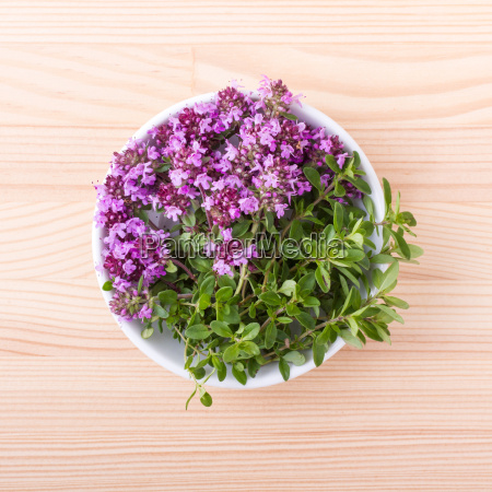 porcelain bowl with flowering wild thyme