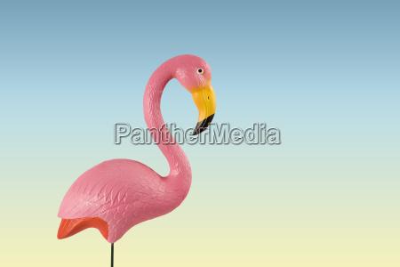 rosa flamingo auf rosa hintergrund