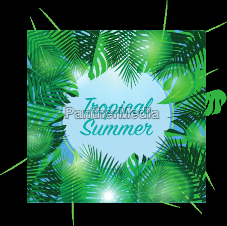 tropical summer background with leaves design