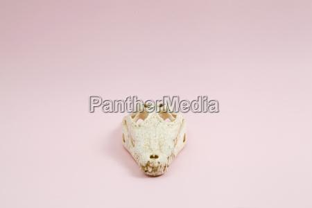 rosa krokodil schaedel