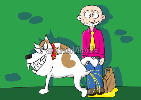lustige aggressive hund urinieren markierung territorium