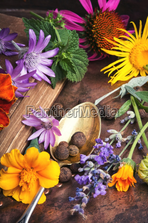 set with healthy herbs