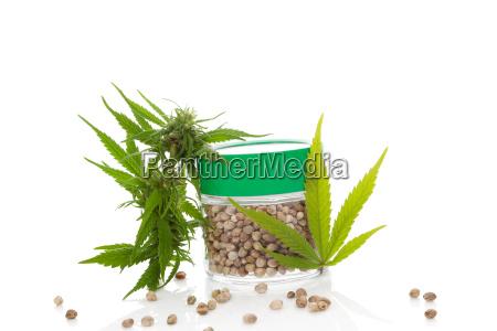 medizin cannabis samen