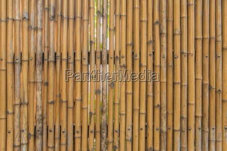bamboo fence wall texture pattern for