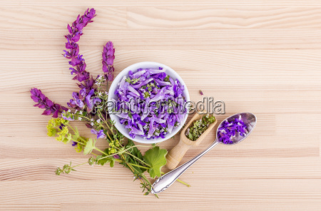 flowers of lavender thyme and ladys