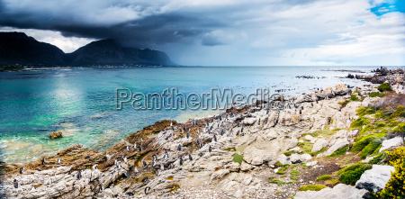 amazing landscape of bettys bay