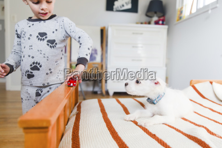 a puppy sitting on a bed