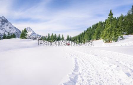 berge winter dezember wildniss chaussee schnee