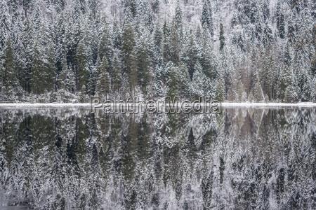 winterlandschaft in bayern arbersee