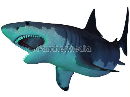 megalodon shark unterwasser