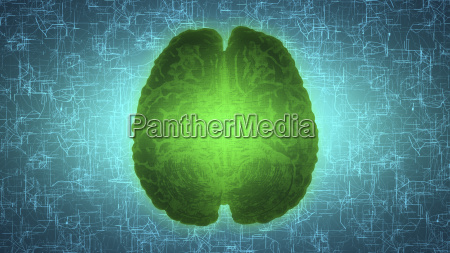 glowing green brain wired on neural