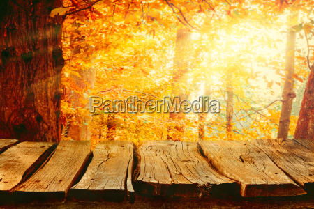 Herbst Hintergrund Natur Stockfoto 23007525 Bildagentur