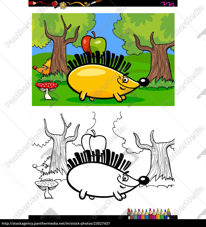 Lizenzfreie Vektorgrafik 23027437 Karikatur Igel Zeichen Färbung Buch