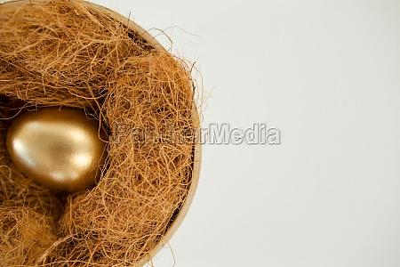 golden egg in nest against white