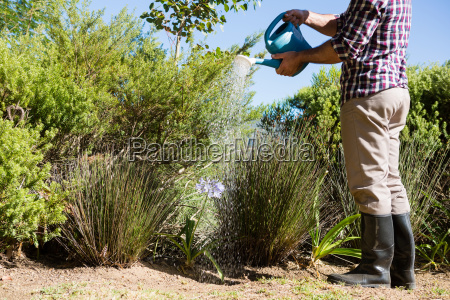 man watering plants with watering can
