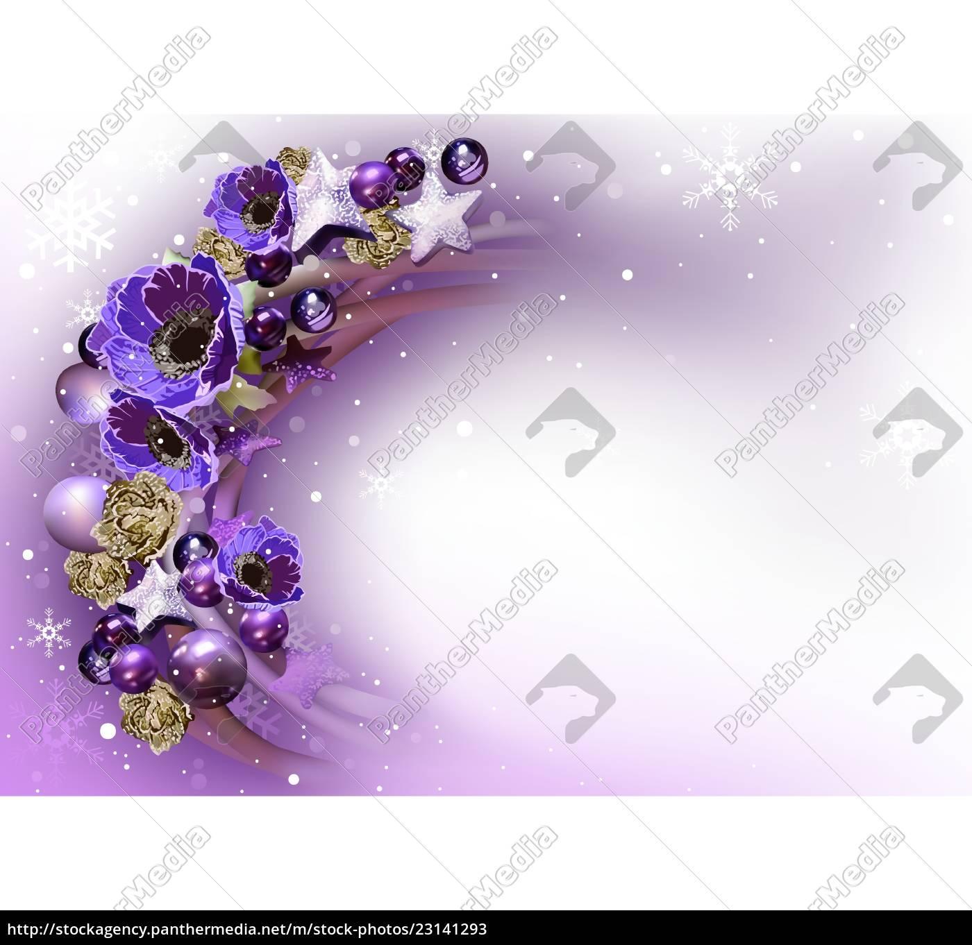lila, weihnachtskranz, hintergrund - 23141293
