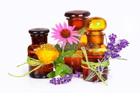 wellness with lavender calendula echinacea