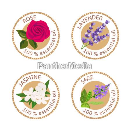 set of essential oils labels rose