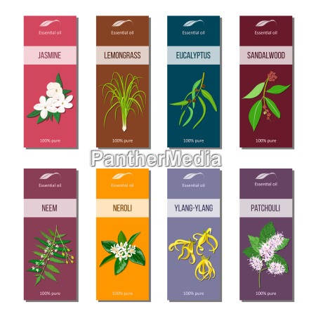 essential oil tags collection sandalwood patchouli