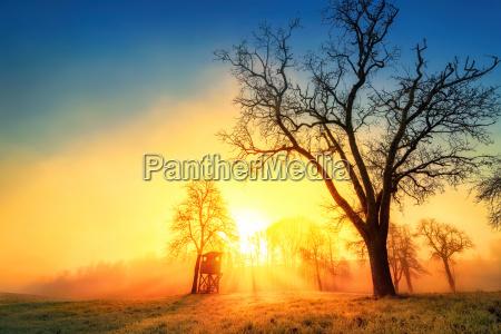 idyllic landscape with atmospheric sunrise with