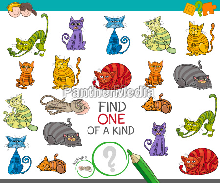find one picture of a kind