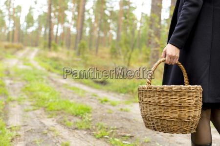 woman collecting mushrooms in dark peaceful