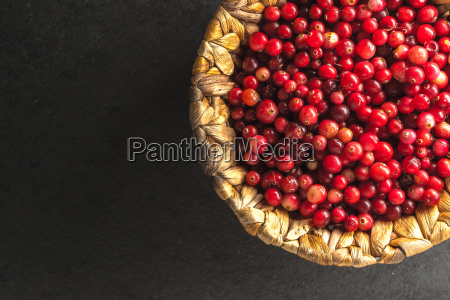 bright red cranberry in the basket