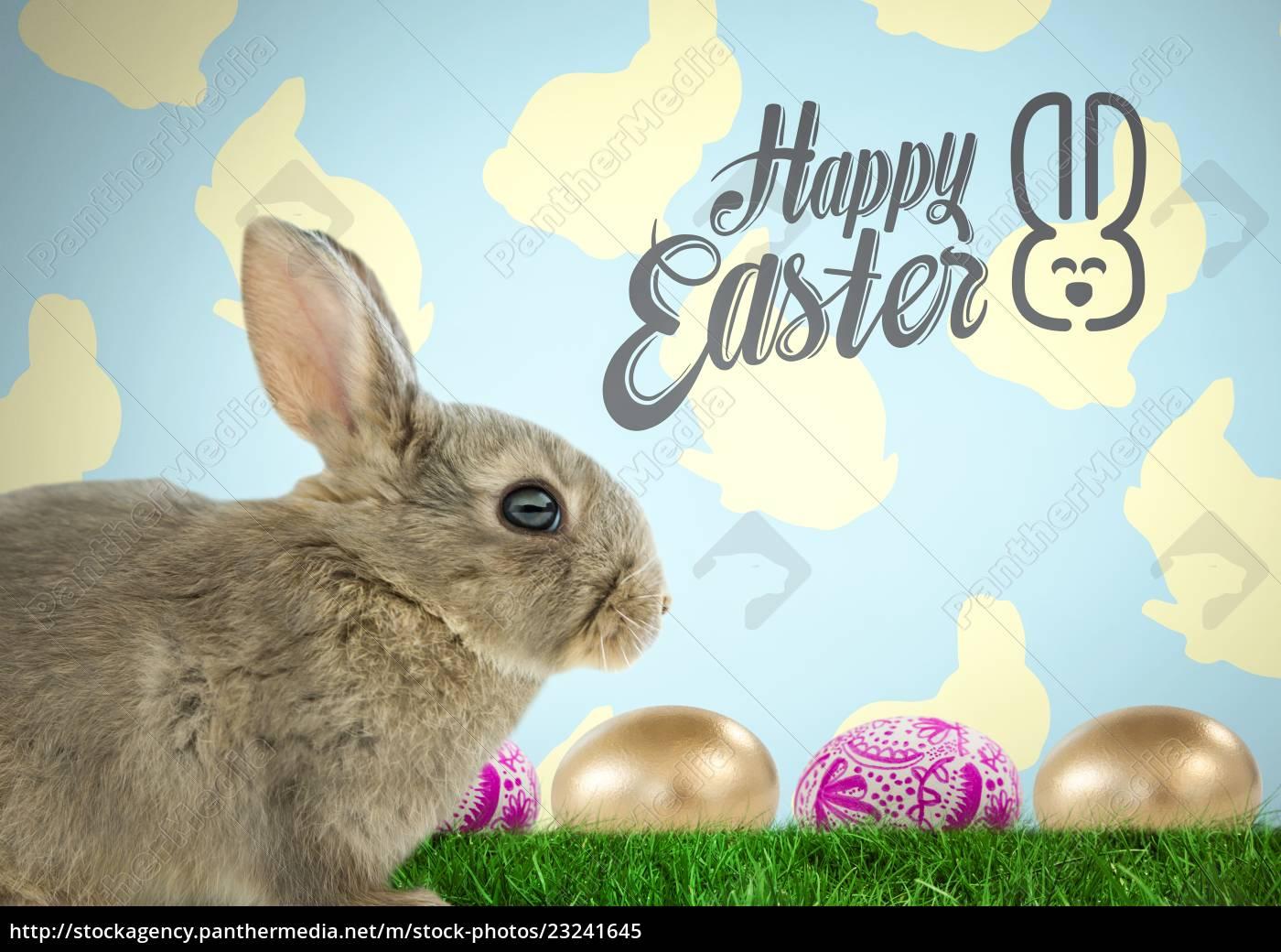 frohe ostern text mit ostern hase mit eiern vor dem - Stockfoto ...