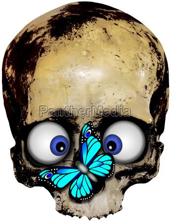 totenkopf halloween totenschaedel skull kochen horror