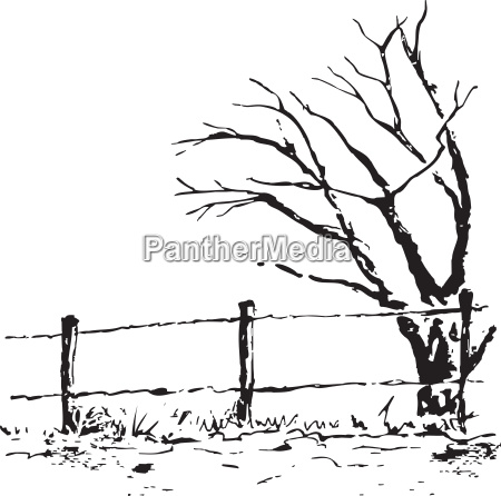 lonely tree with fence vector nature