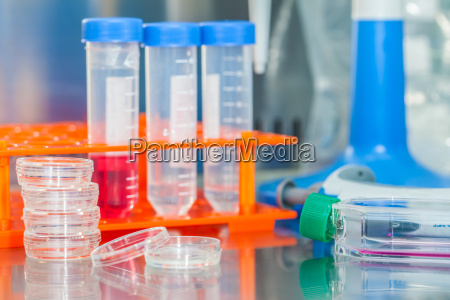 laboratory materials in a safety laminar